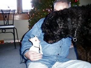 Dobie meeting Doug Niles\' dog Reggie